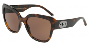 Sunglasses - Dolce & Gabbana - DG6118 - 502/73 HAVANA // BROWN