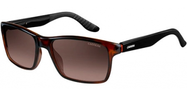 Gafas de Sol - Carrera - CARRERA 8002 - 2XF (LA) HAVANA BLACK // BROWN GRADIENT POLARIZED