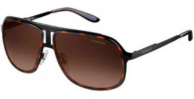 Gafas de Sol - Carrera - CARRERA 101/S - KLS (J6) BLACK HAVANA BLACK // BROWN GRADIENT