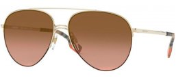 Sunglasses - Burberry - BE3113 FERRY - 110913 LIGHT GOLD // BROWN GRADIENT