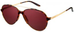 Sunglasses - Carrera - CARRERA 118/S - VJY (W6) HAVANA GOLD // BURGUNDY POLARIZED ANTIREFLECTION
