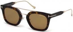 Sunglasses - Tom Ford - ALEX-02 FT0541 - 52E DARK HAVANA // BROWN